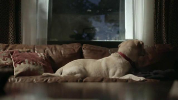 Budweiser TV Spot, 'Global Be(er) Responsible Day: Friends Are Waiting' - Thumbnail 5