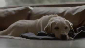 Budweiser TV Spot, 'Global Be(er) Responsible Day: Friends Are Waiting' - Thumbnail 6