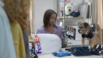 FedEx OneRate TV Spot, 'Pet Jerseys' - Thumbnail 2