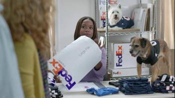 FedEx OneRate TV Spot, 'Pet Jerseys' - Thumbnail 3