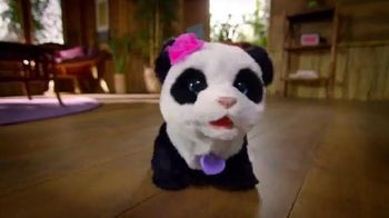 FurReal Friends TV Spot, 'PomPom Baby Panda
