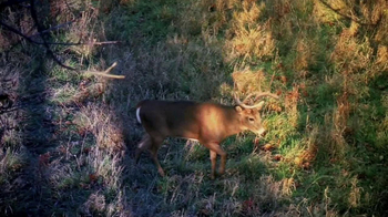 Hoyt Archery Spyder Crossbow TV Spot - Thumbnail 1