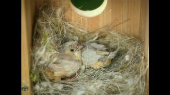 My Spy Birdhouse TV Spot - Thumbnail 4