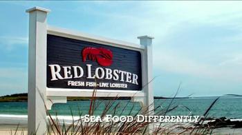 Red Lobster RLunch TV Spot - Thumbnail 10