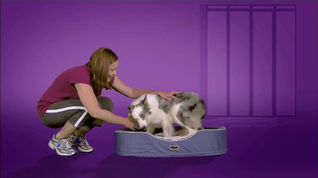 Milk-Bone TV Spot, 'Dog Expert Tip' Featuring Victoria Stilwell - 10 commercial airings