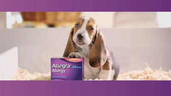 Allegra TV Spot, \'Puppy\'