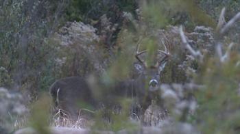 Wildlife Research Center TV Spot - Thumbnail 6