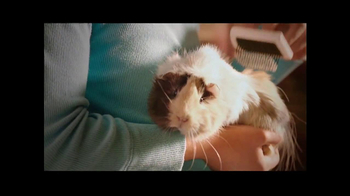 PetSmart Biggest Specialty Pet Sale of the Year TV Spot, 'New Pet' - Thumbnail 4