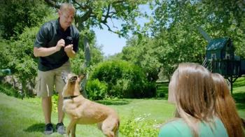 Purina Pro Plan P5 Dog Training App TV Spot, 'Animal Planet: Bella shows Pugsly' - Thumbnail 7