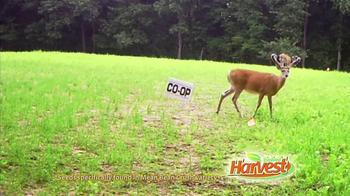 Evolved Harvest TV Spot - Thumbnail 7