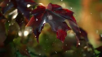 Crown Royal Maple Finished TV Spot, 'Tree' - Thumbnail 4