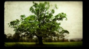 Crown Royal Maple Finished TV Spot, 'Tree' - Thumbnail 5