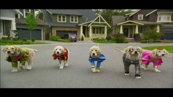 Puppies thumbnail
