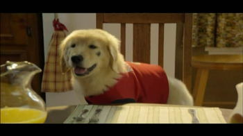 The Shelter Pet Project TV Spot, 'Puppies' - Thumbnail 4