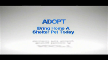 The Shelter Pet Project TV Spot, 'Puppies' - Thumbnail 9