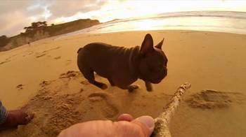 GoPro HERO3 TV Spot, 'Chicken the Dog' Song by Blackbird Blackbird - Thumbnail 2