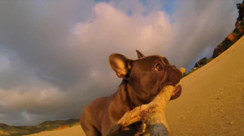 GoPro HERO3 TV Spot, 'Chicken the Dog' Song by Blackbird Blackbird - Thumbnail 4