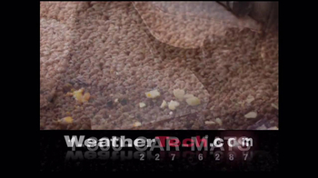 WeatherTech TV Spot, 'Mud Room' - Thumbnail 10