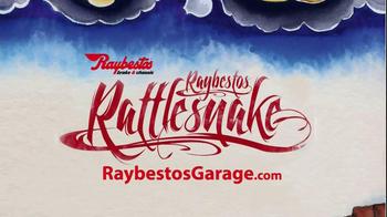 Raybestos Rattlesnake TV Spot - Thumbnail 10