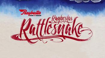 Raybestos Rattlesnake TV Spot - Thumbnail 2