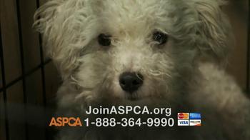 ASPCA TV Spot, 'Doggie in the Window' - Thumbnail 10