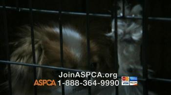 ASPCA TV Spot, 'Doggie in the Window' - Thumbnail 9