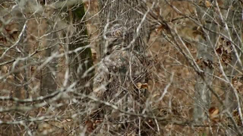 Realtree Xtra TV Spot, 'Most Effective Camouflage Pattern' - Thumbnail 3