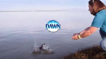 Dawn TV Spot, 'We All Love Wildlife' - Thumbnail 7