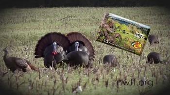 National Wild Turkey Federation TV Spot, 'Membership' - 130 commercial airings