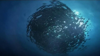 Discovery Channel TV Spot, 'Save Our Seas' - Thumbnail 1