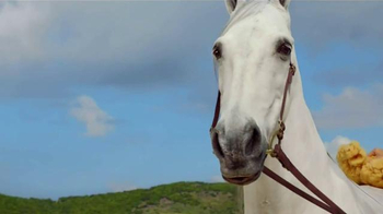 DIRECTV TV Spot, 'Hannah Davis and Her Horse: Bath' Featuring Hannah Davis - Thumbnail 6