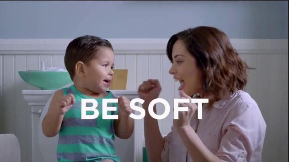 angel soft tv commercial vase ispot tv