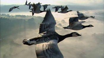 Verizon TV Spot, 'Las aves' [Spanish] - 228 commercial airings