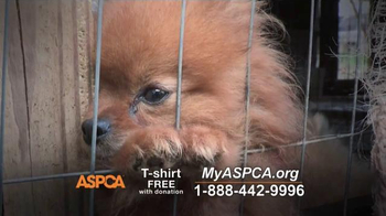 ASPCA TV Spot, 'Real and Undeniable' - Thumbnail 5