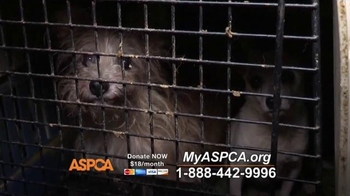 ASPCA TV Spot, 'Real and Undeniable' - Thumbnail 3