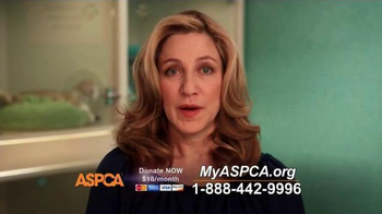 ASPCA TV Spot, 'Real and Undeniable' - Thumbnail 4