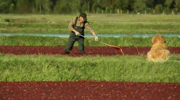 Nutro Farm's Harvest TV Spot, 'No Red Dye' - Thumbnail 2