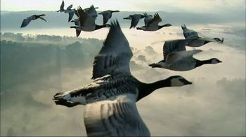 Verizon TV Spot, 'Magnificent Geese' - 3235 commercial airings