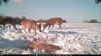 Browning Trail Cameras TV Spot, 'Changing the Game' - Thumbnail 3