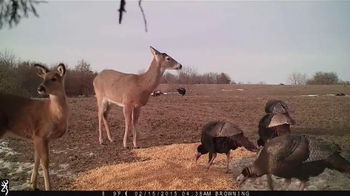 Browning Trail Cameras TV Spot, 'Changing the Game' - Thumbnail 5