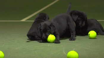 Tennis Warehouse TV Spot, 'Puppies' - Thumbnail 5