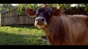 Chobani TV Spot 'To Love This Life Is To Live It Naturally - Cow' - Thumbnail 5