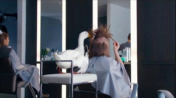Aflac TV Spot, 'Duck Salon' - Thumbnail 4