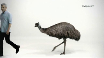 trivago TV Spot, 'Pet Ostrich' - 1536 commercial airings