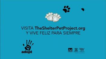 The Shelter Pet Project TV Spot, 'Comparte tu Corazón' [Spanish] - Thumbnail 9