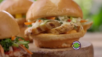 Tropical Smoothie Cafe TV Spot, 'Luau Sliders' - Thumbnail 4