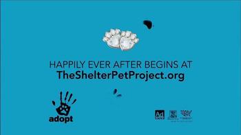 The Shelter Pet Project TV Spot, 'Palace Pets' - Thumbnail 8
