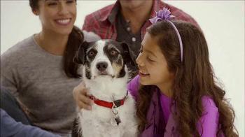 The Shelter Pet Project TV Spot, 'Palace Pets' - Thumbnail 6