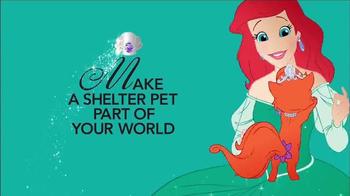 The Shelter Pet Project TV Spot, 'Palace Pets' - Thumbnail 7