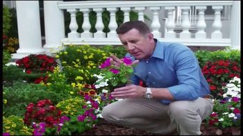 Spray-N-Grow TV Spot - 11 commercial airings